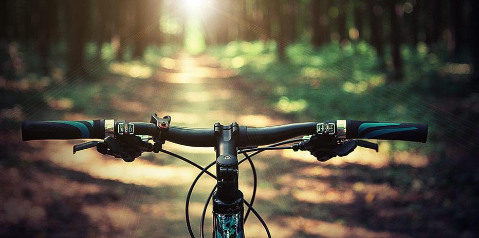 Gör upp en egen mountainbike-rutt